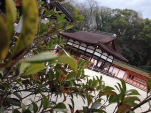 下鴨神社写真